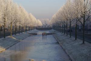 Dierdonk in de winter